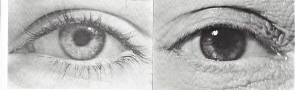 Fisher Augenpaar